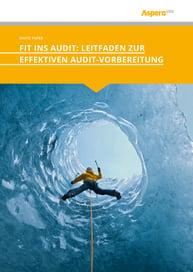 Leitfaden zur Audit Vorbereitung